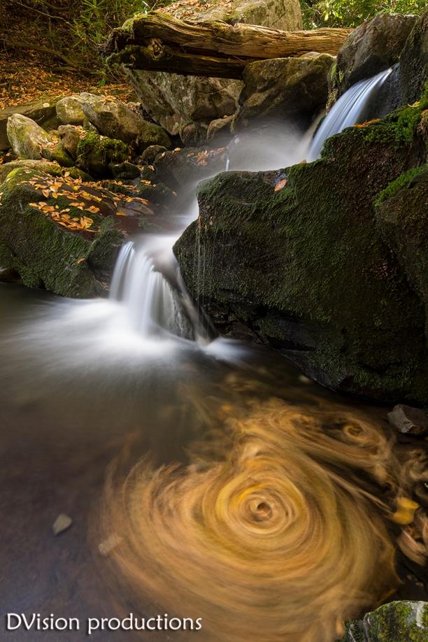 Fall leaves swirling in an Appalachian creek.