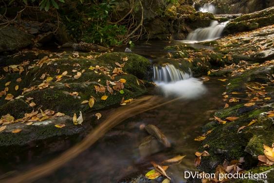 Appalachian creek ribbon of color.