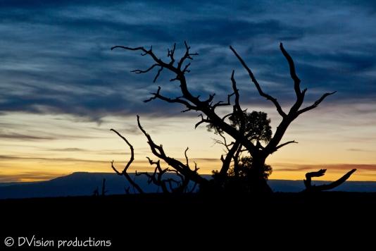 Sunrise, Colorado National Monument CO.